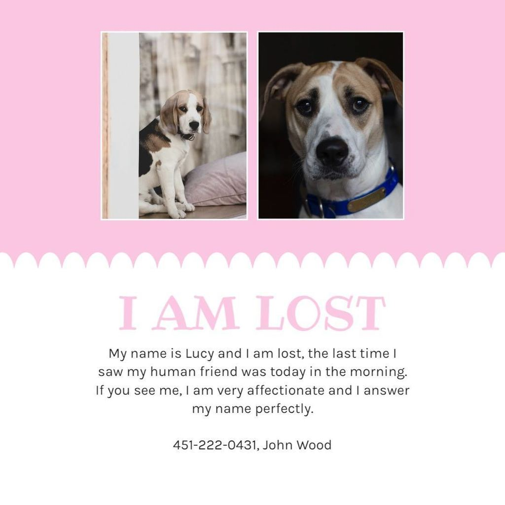lost dog poster pink