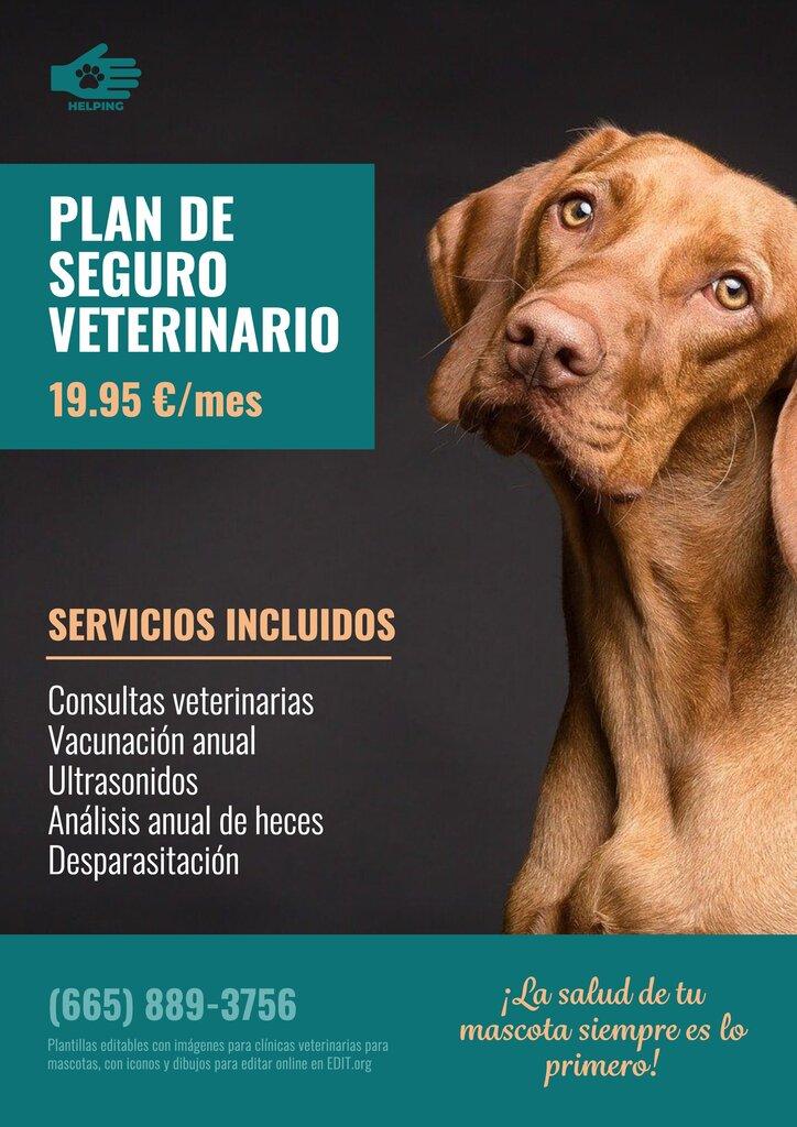 Plantilla de cartel editable online para promocionar clinica veterinaria, con imagen de perro
