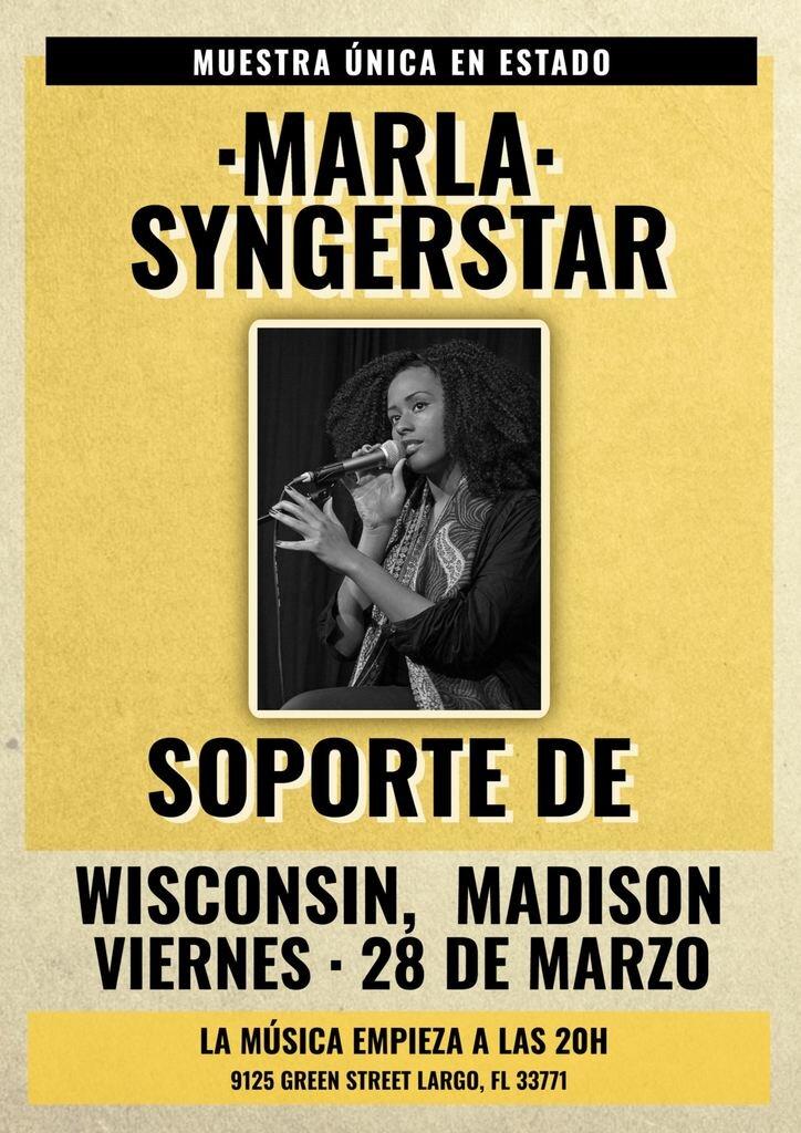cartel cantautor concierto