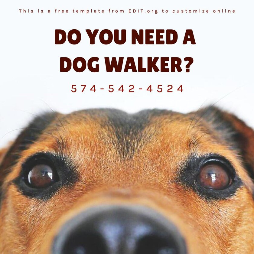 Dog walker template to customize online and for free